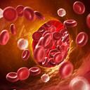 Атеросклероз — сосудов головного мозга, артерий, симптомы и способы лечения атеросклероза