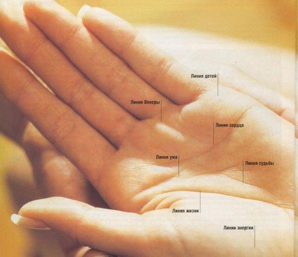 Что может сказать наша рука о браке